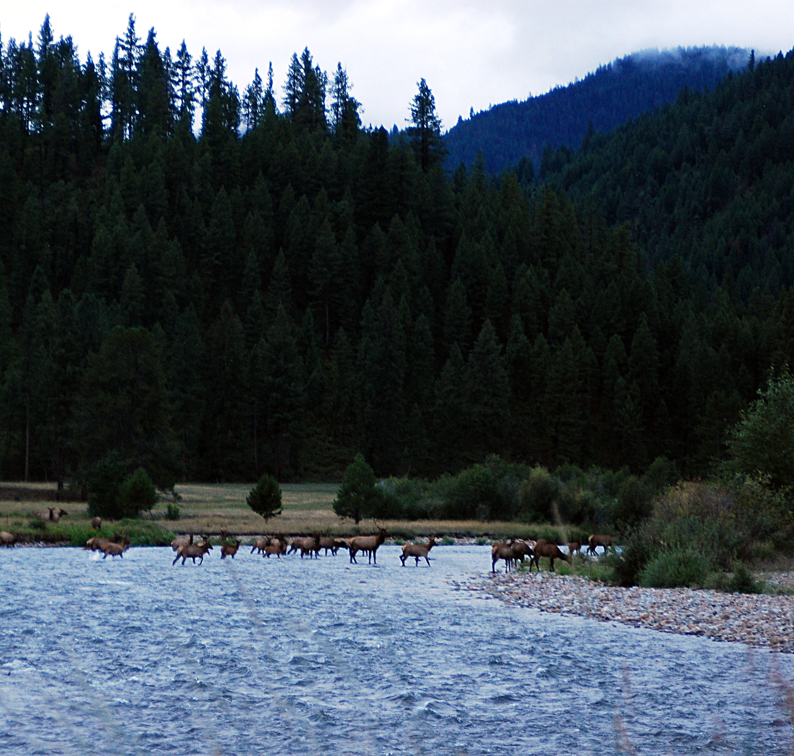 , Montana Dispatch: Horse Creek Hot Springs