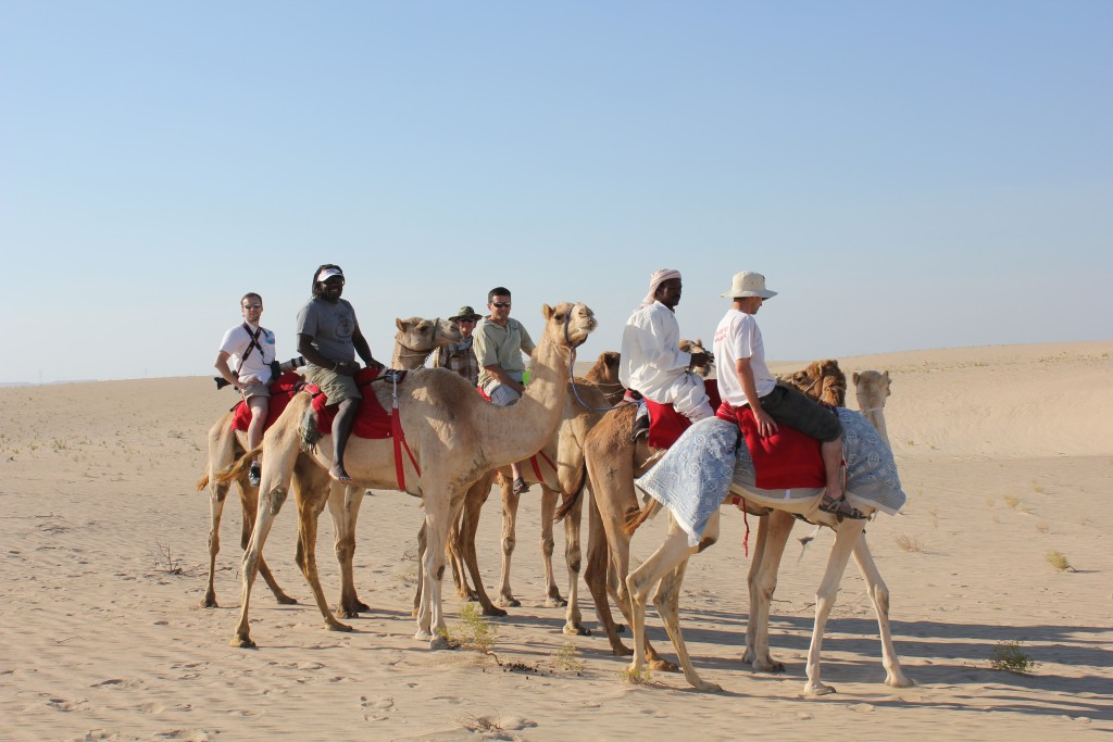 Hunting from camels