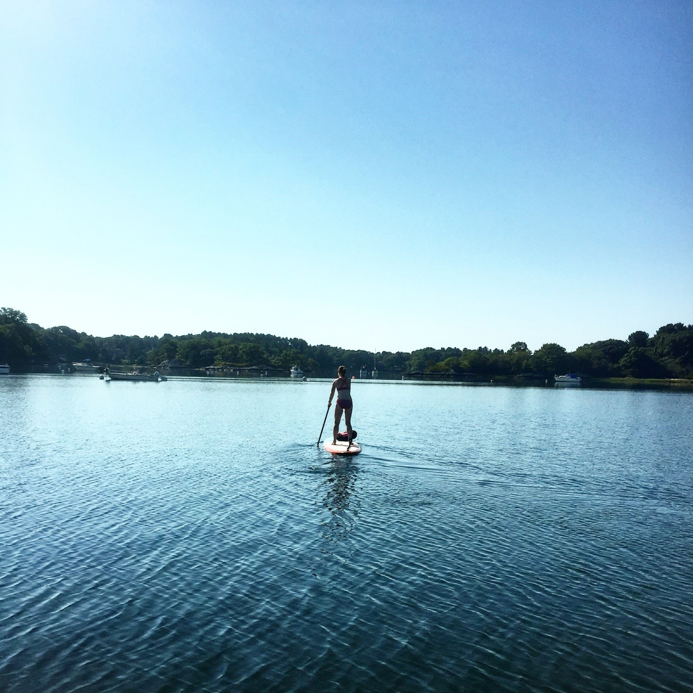 SUP Yoga, Go with the Flow: 7 Reasons to Try SUP Yoga