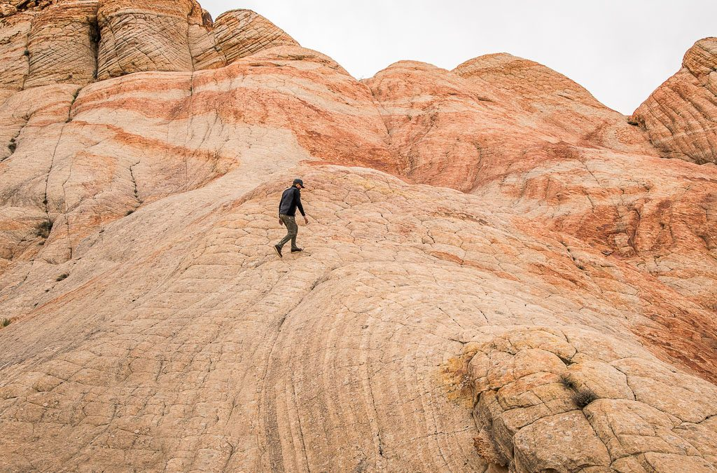 A Lesson in Geology: Utah's Petrified Sand Dunes