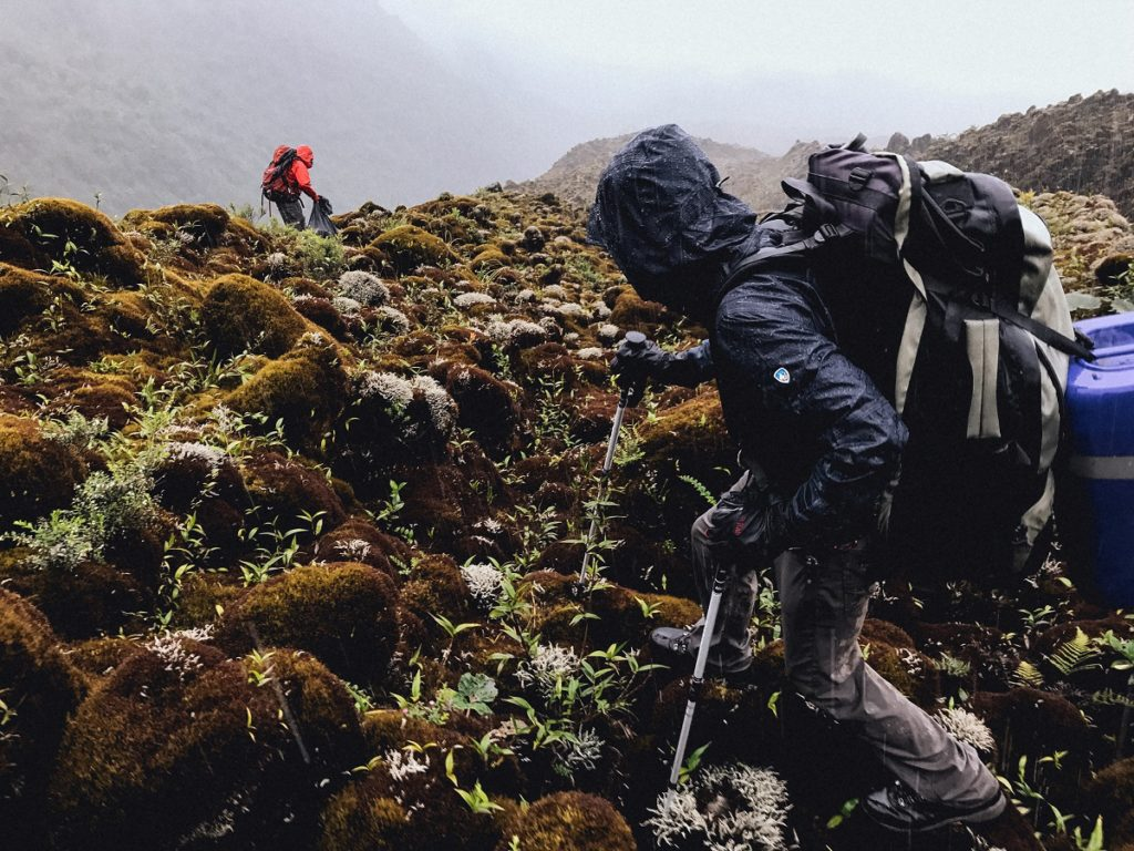 Two men hiking over a field covered in moss dressed in KUHL men's outerwear.