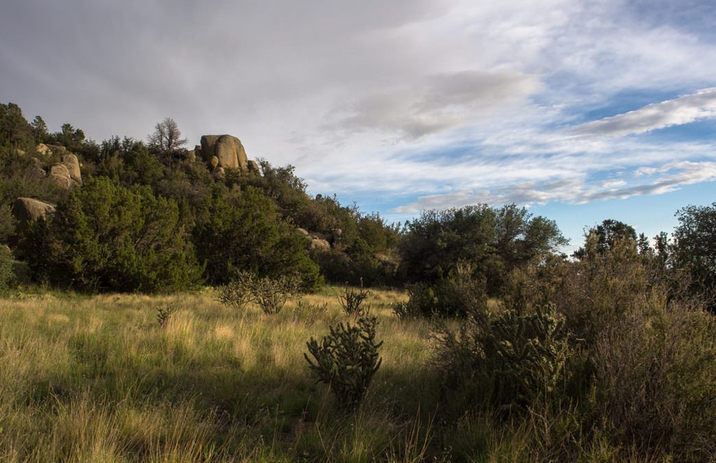 10 of the Best Hiking Trails in New Mexico
