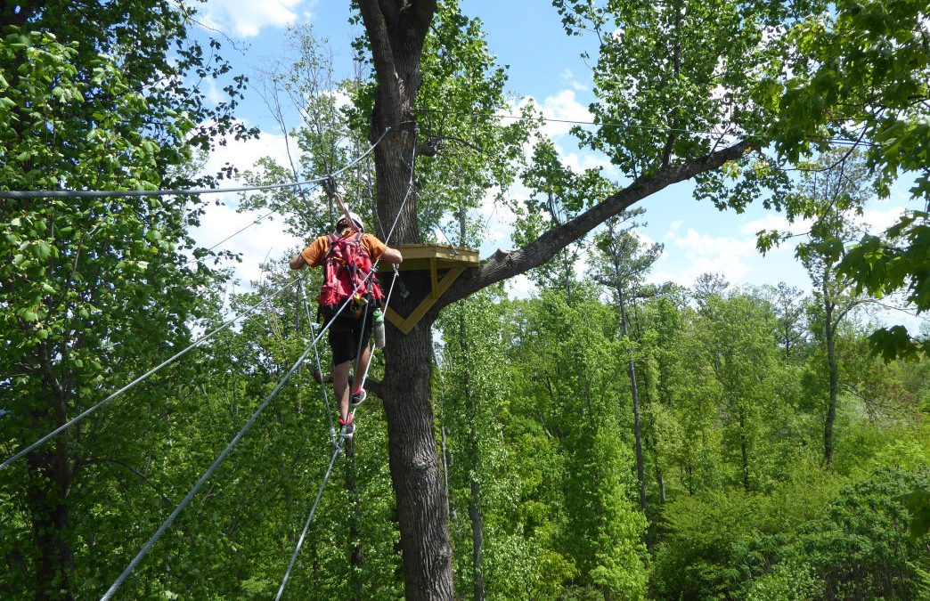 Aerial Adventure: 5 Fantastic Ziplines in the Southeast