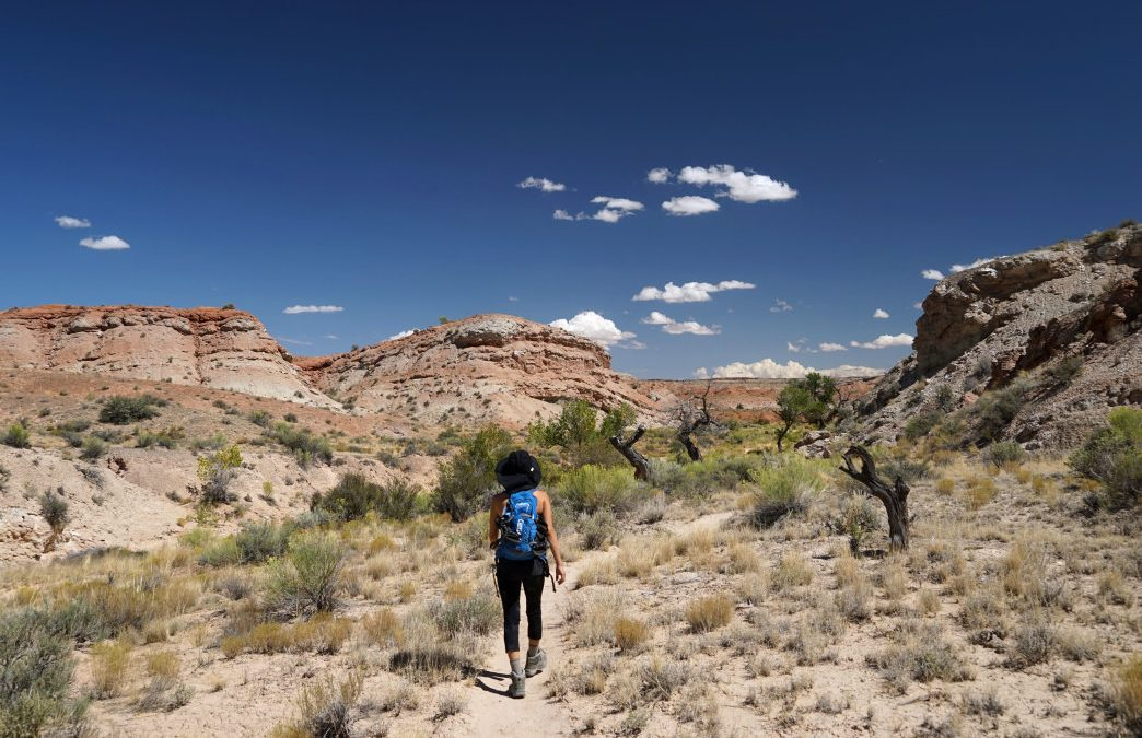 Exploring Capitol Reef: What to See and Do in a Short Amount of Time