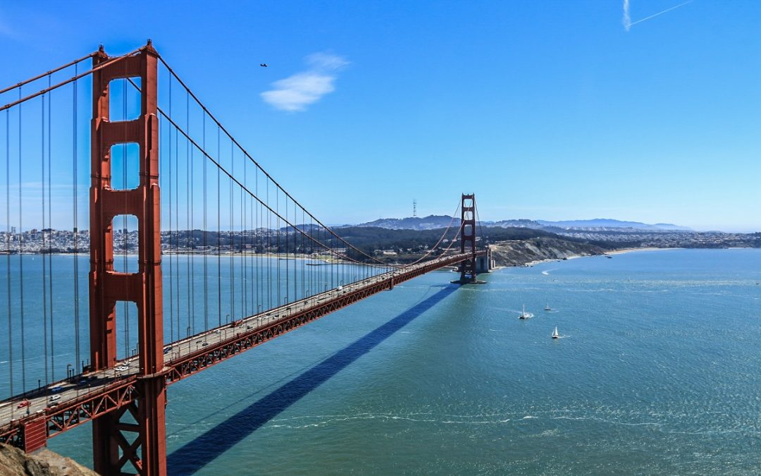 Beyond the City Limits: Exploring San Francisco's Wild Side