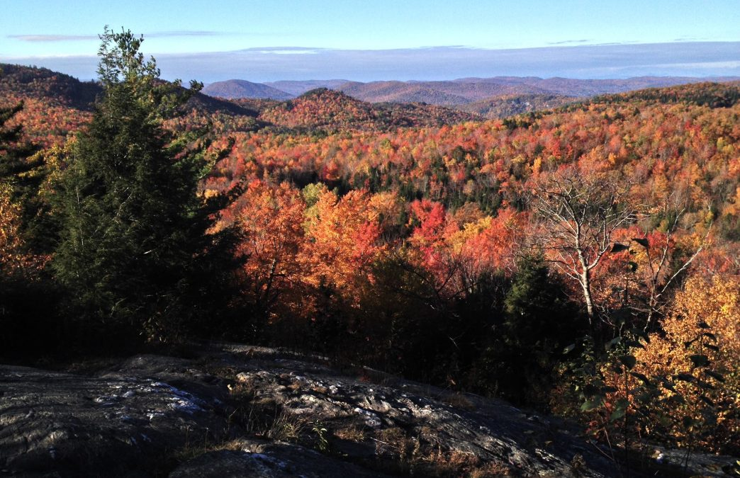 5 Amazing Hikes in Vermont with Stunning Foliage Views