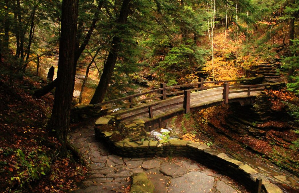 10 of the Best Fall Hikes in Corning and the Southern Finger Lakes