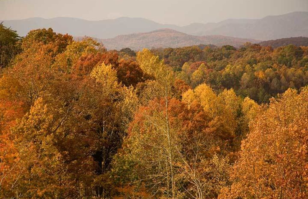 11 of Atlanta's Most Spectacular Spots for Leaf-Peeping