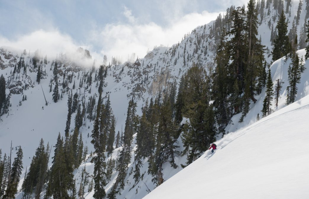 Conservation and Recreation: What Alta is Doing to Remain a World-Class Ski Destination