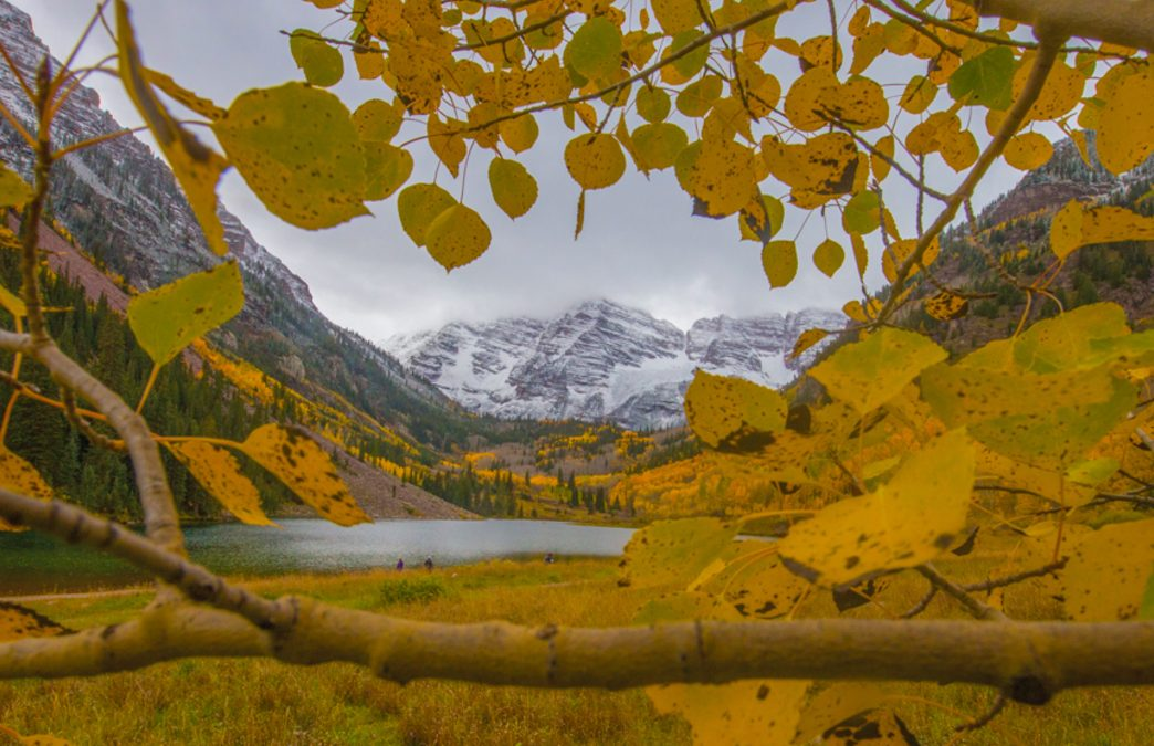 The Best Places to See Spectacular Fall Foliage in Aspen