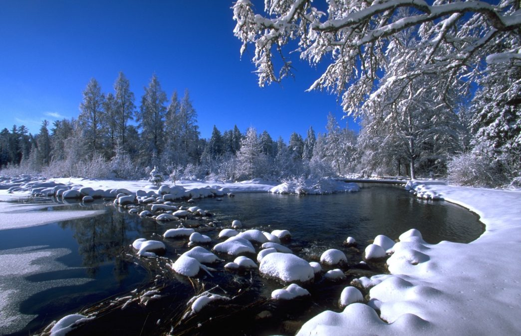 8 Minnesota State Parks to Explore This Winter