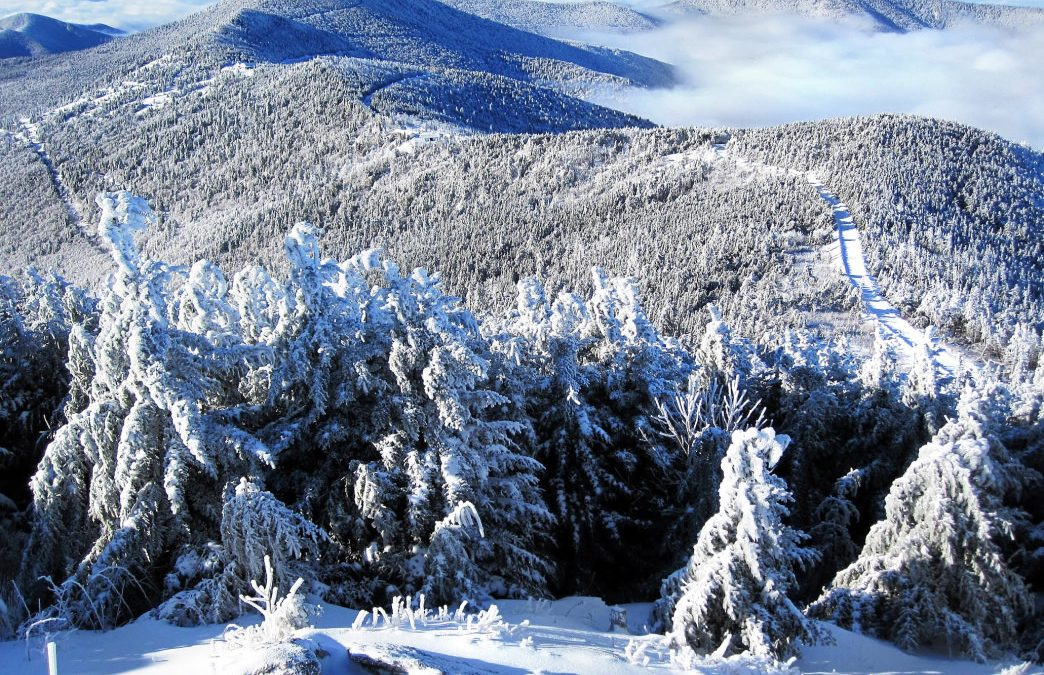 4 Reasons to Hike North Carolina's Mount Mitchell in the Winter