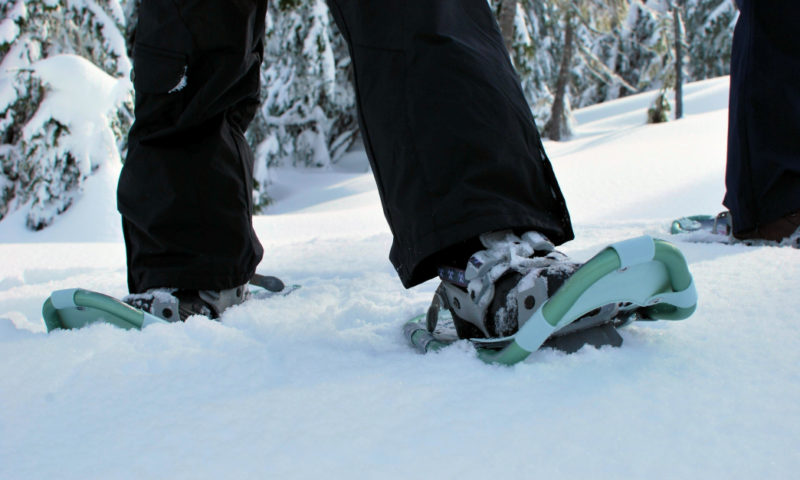 While you can snowshoe just about anywhere, take the time to explore some of the scenic trails the Chicago area has to offer.