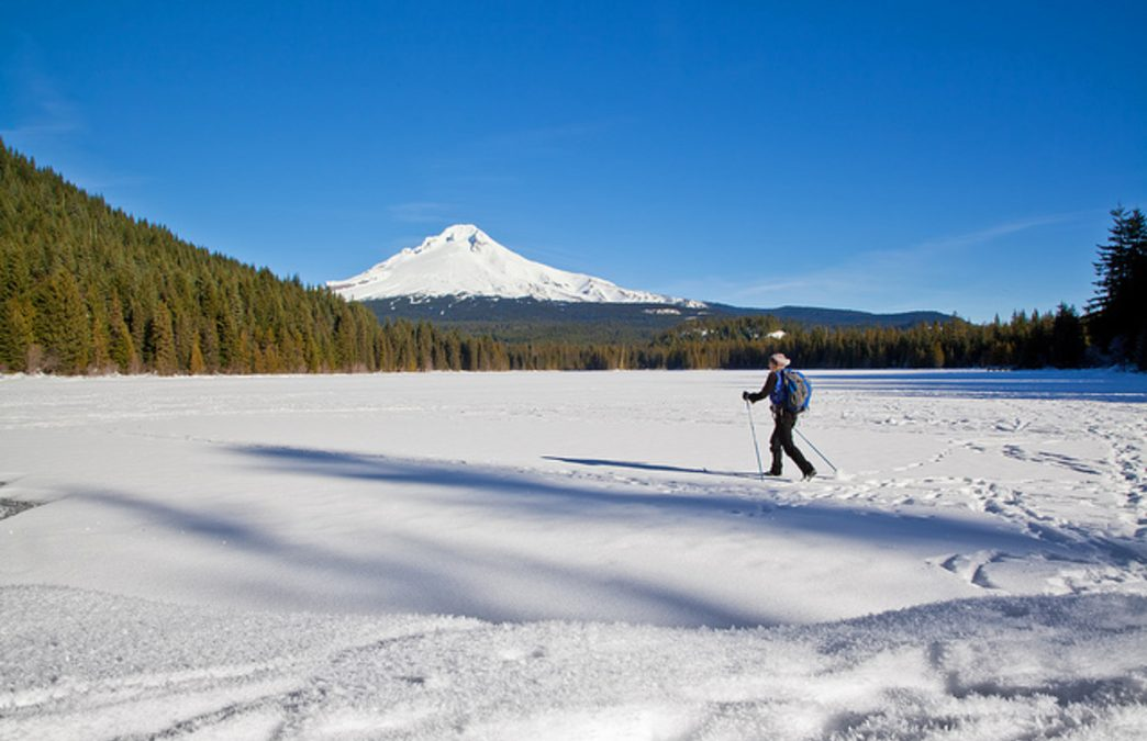 Snowshoeing around Portland: How to Explore the Wintry Backcountry