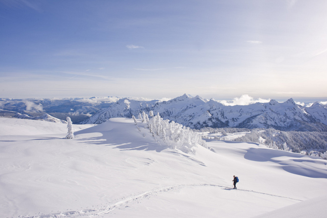 A snowshoer hits the trail in Mount Rainier.