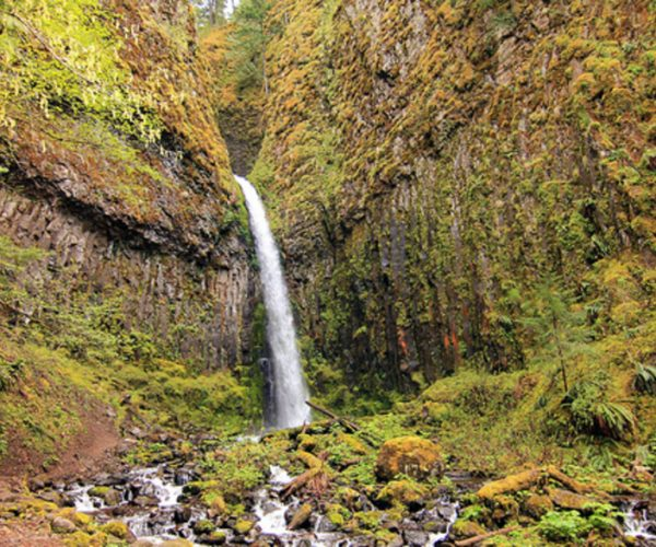 Dry Creek Falls is sometimes (unfairly) overlooked for bigger waterfalls in the Columbia River Gorge. But those who make the trek are rewarded with beautiful views.