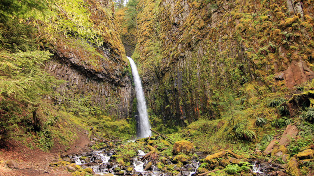 Hit the Trail: The Best Spring Hikes in Portland