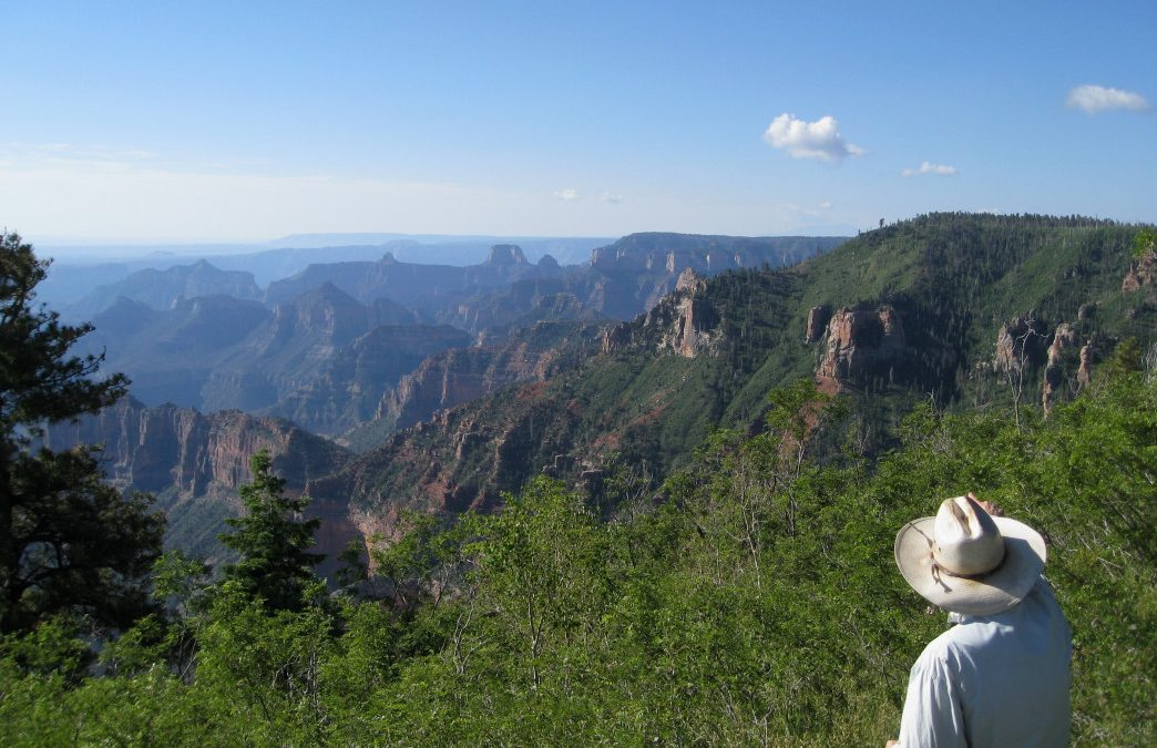 An Insider's Guide to Camping Near the Grand Canyon