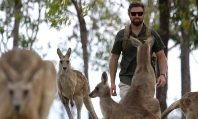 Forrest Galante and kangaroos standing in a field.