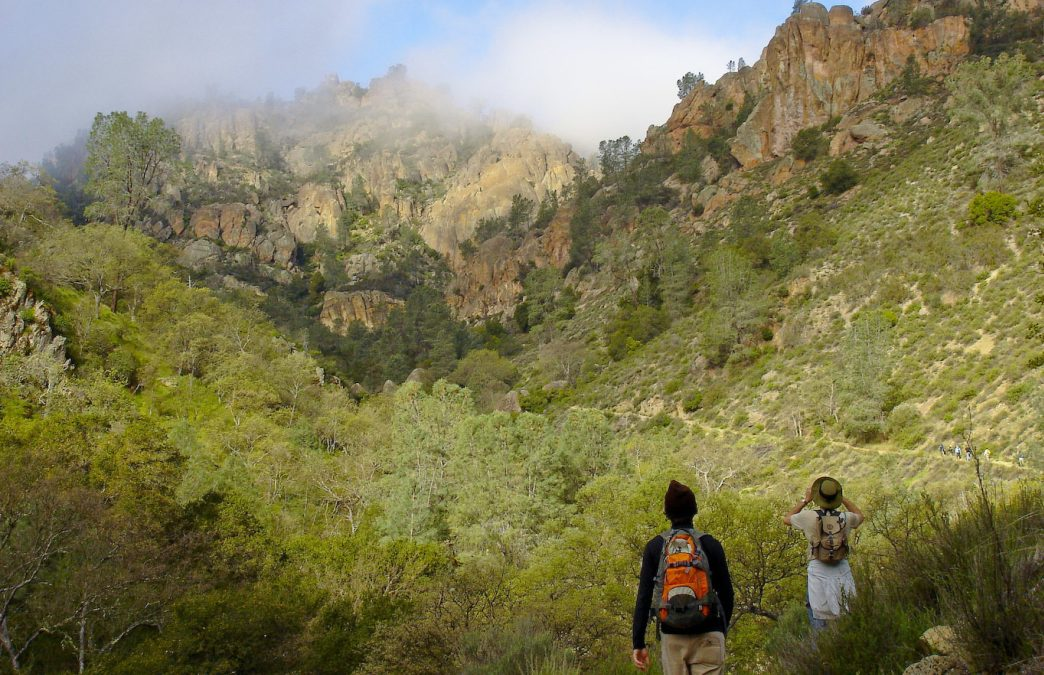 Pinnacles National Park: Otherworldly Landscapes in SF's Backyard