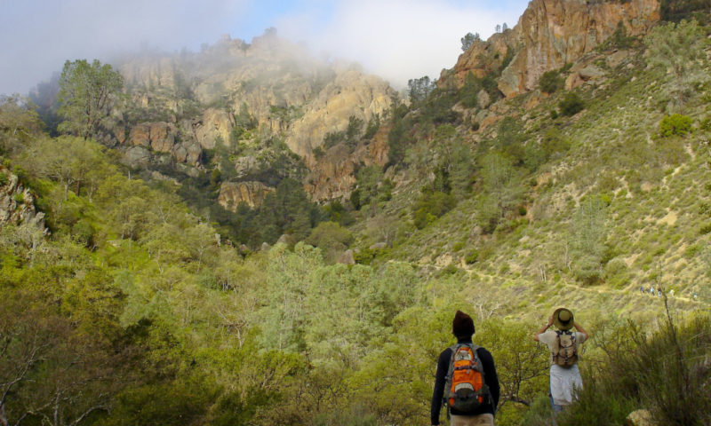 Condor Gulch Trail in Pinnacles National Park
