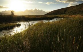 Some of the best views of the Tetons are from Gros Ventre Road and the wilderness beyond it.