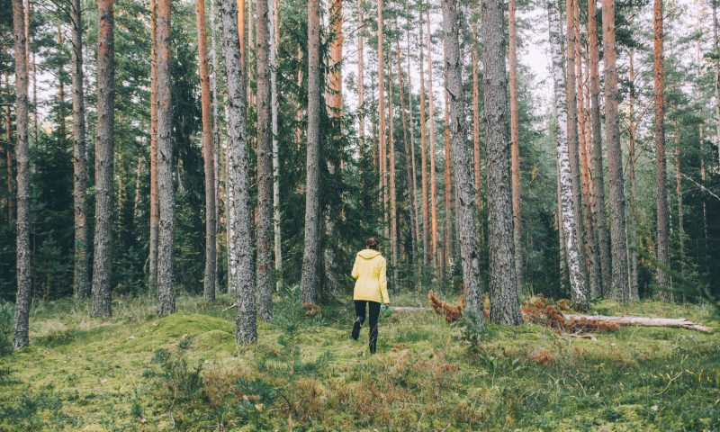 A woman in yellow jacket running a trail in a forest