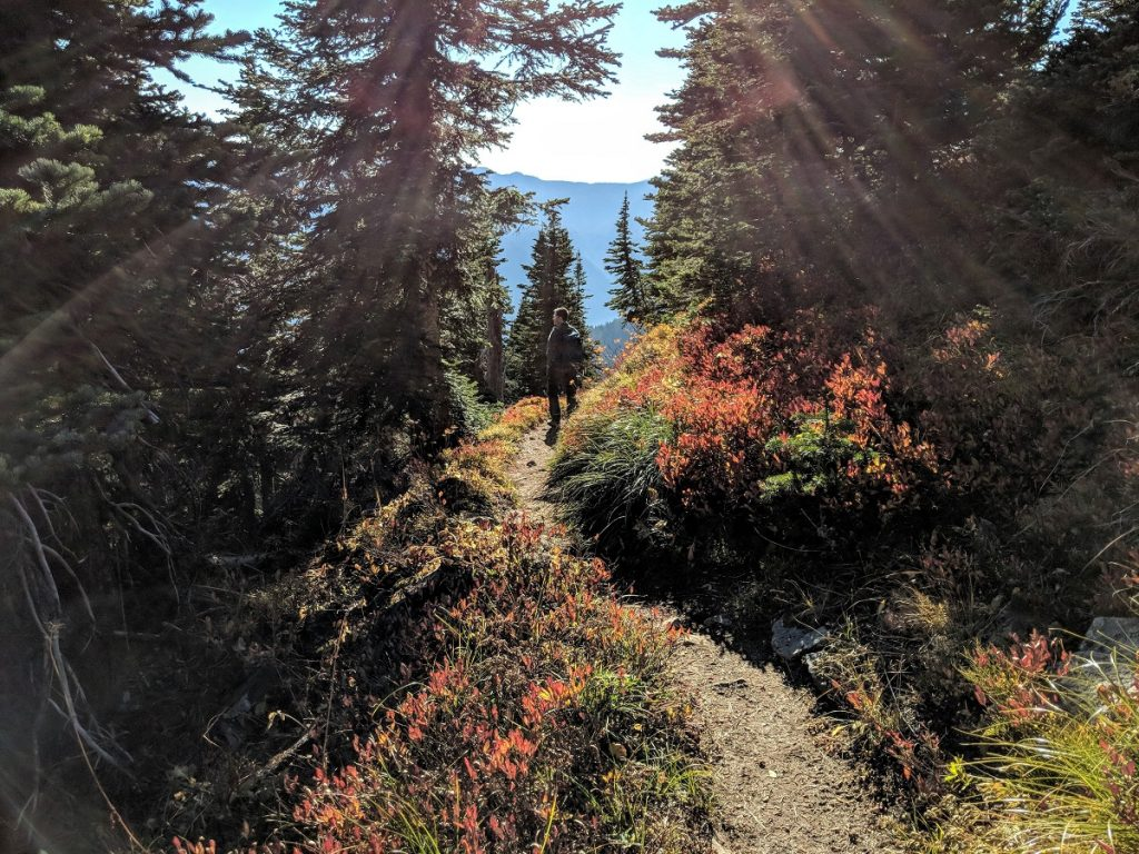BearheadMountain Trail