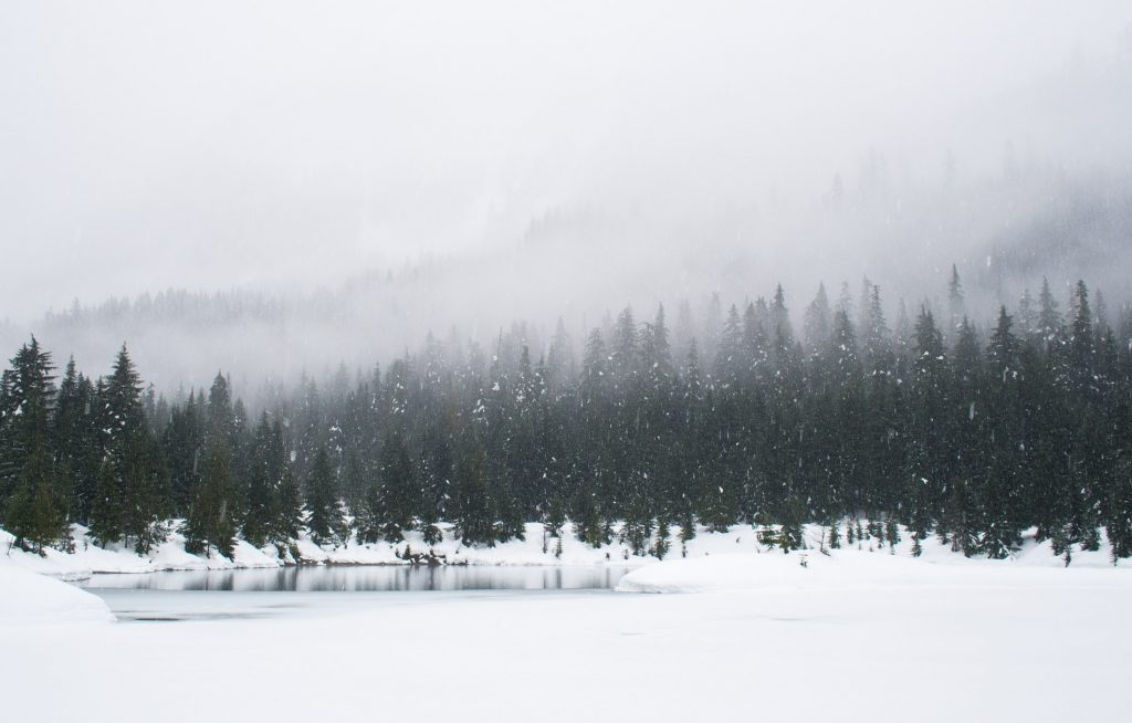 Snowshoeing on a snowy day at Gold Creek Pond