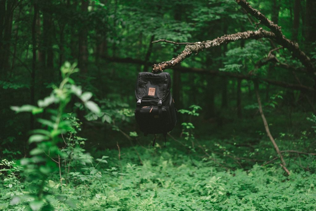 A black backpack hanging from a branch in a forest.