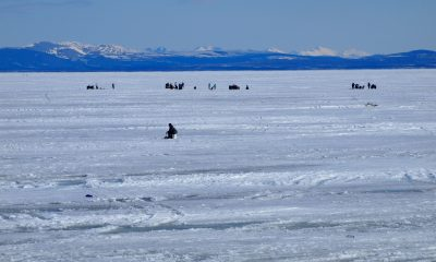 Fishing for sheefish on the Kotzebue sound during the winter.