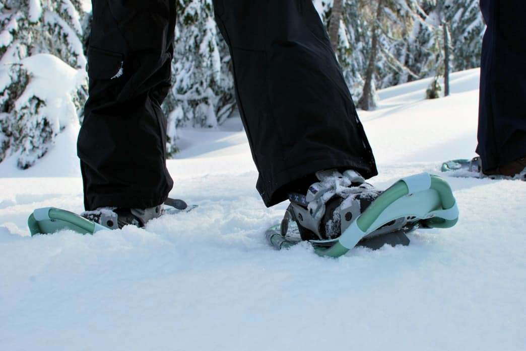 snowshoeing, Go Shoe: A Guide to Snowshoeing Around Salt Lake City