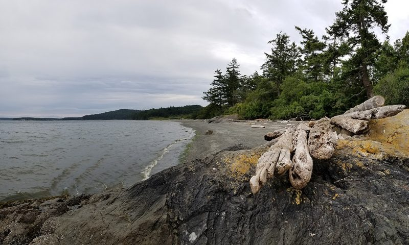 Adventures in the San Juan Islands FI