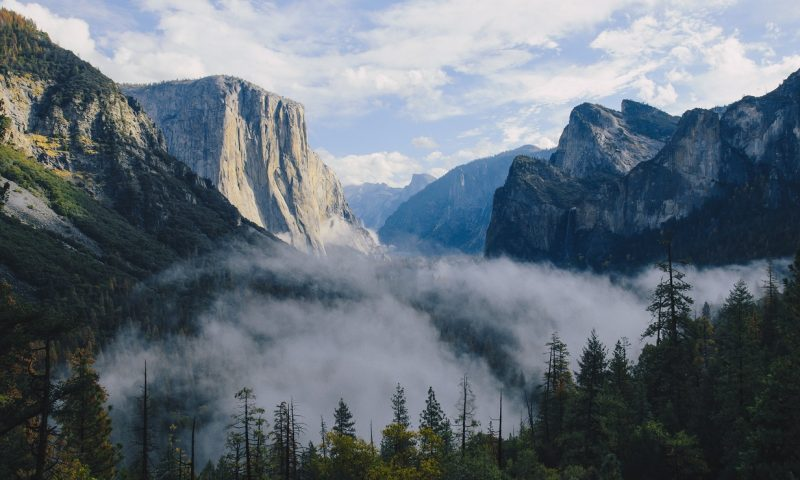 Forest Therapy - Breathtaking Yosemite Valley, United States, shown in KUHL Clothing outdoor blog.