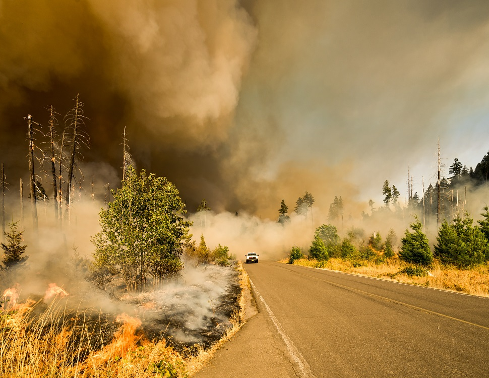 Guide to Wildfire Season - Big Fall Creek Road, Lowell, United States