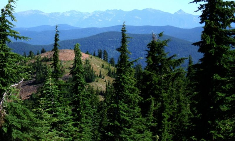 Scotchman Peaks Proposed Wilderness - Featured image for KUHL outdoor blog