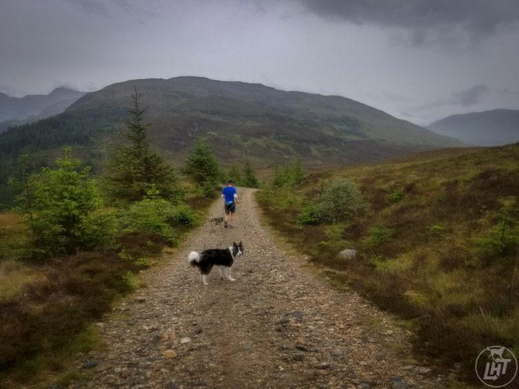Trail Running Scotland