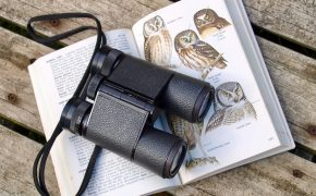 black binoculars on an opened book