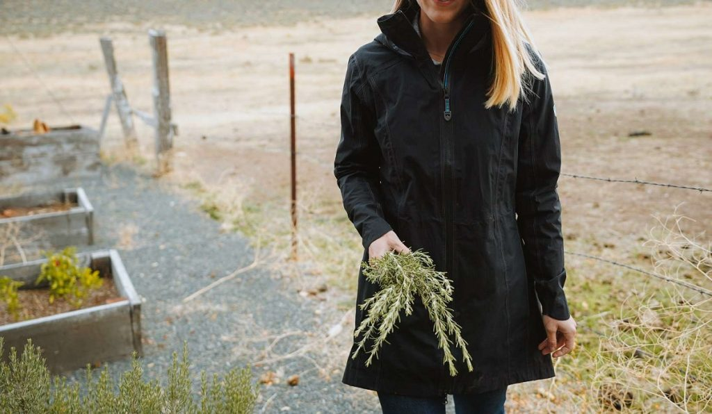 woman carrying a plant