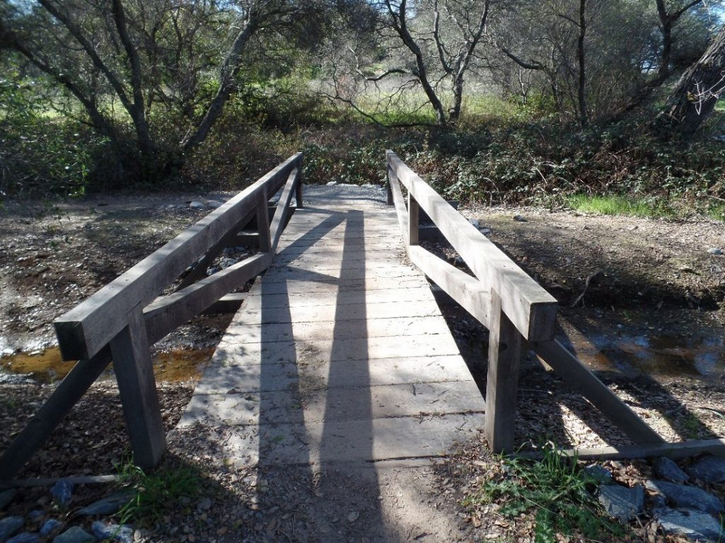 wooden bridge over a small stream