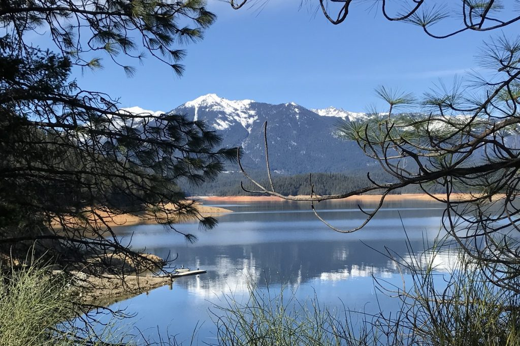 snowy mountain reflecting in body of water surrounded by trees