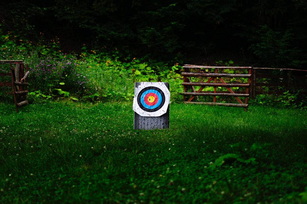 white and multicolored archery target on green field
