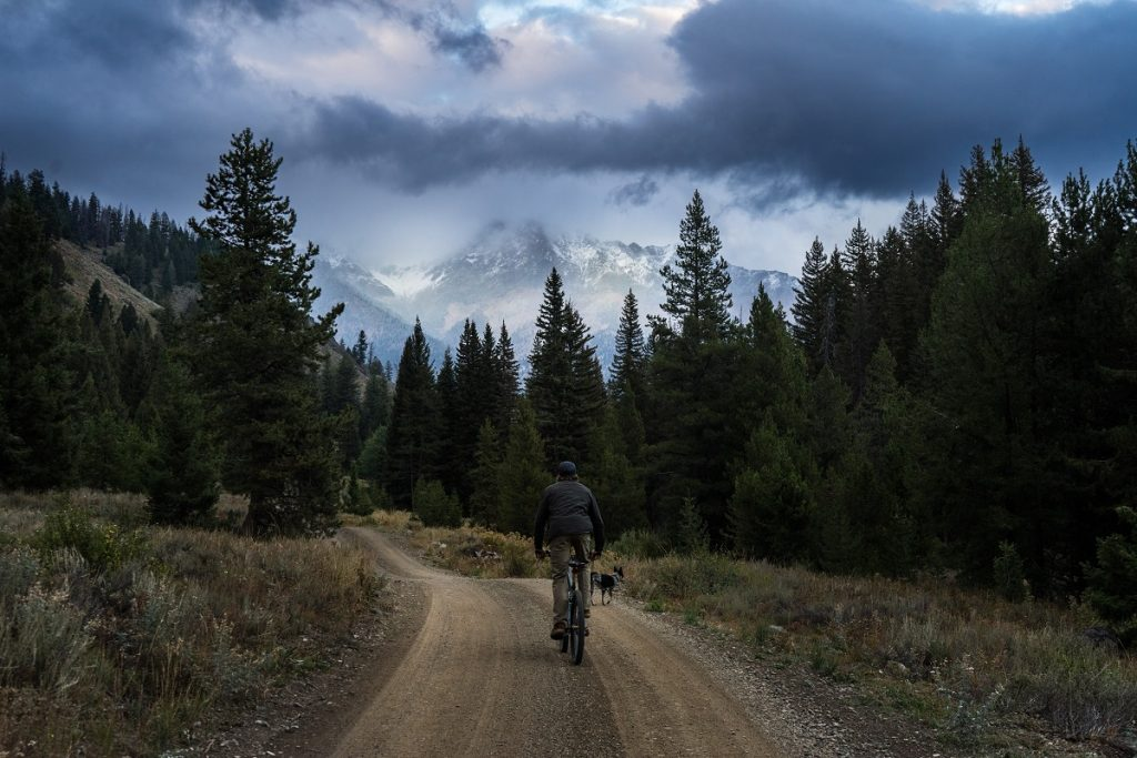 man in KÜHL jacket and KÜHL pants riding bike on trail surrounded with pine trees