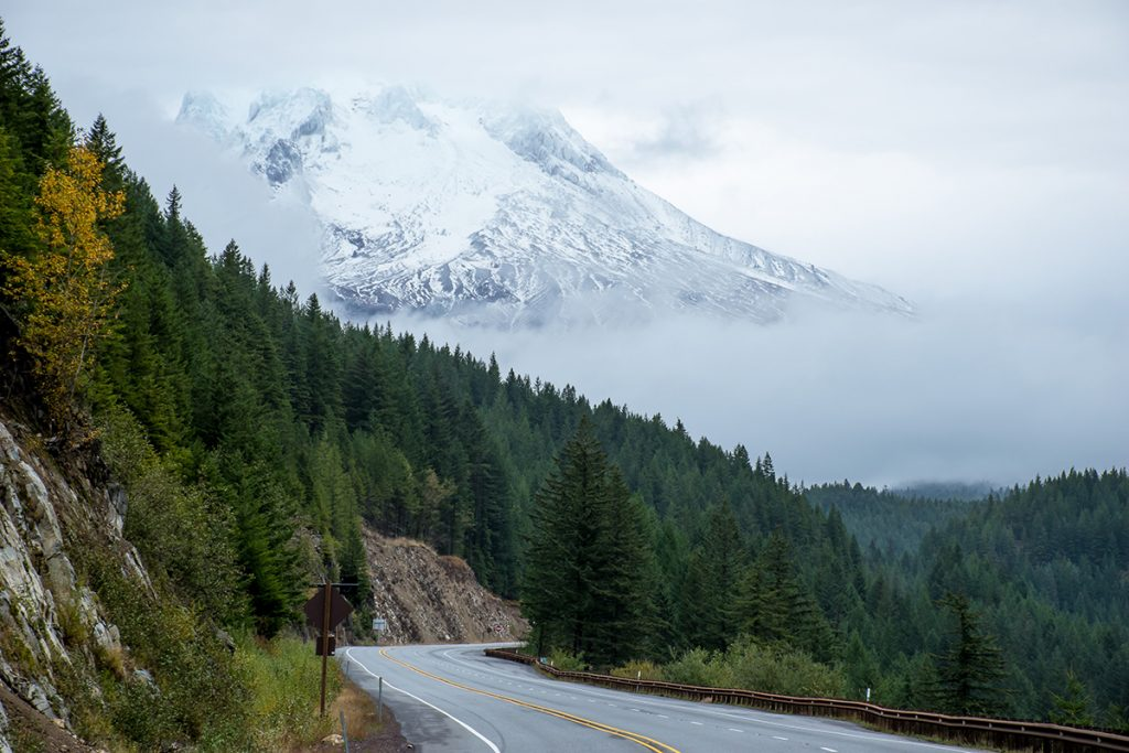 snowy mount hood rising above the road and trees