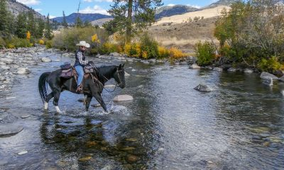 woman riding horse in the river