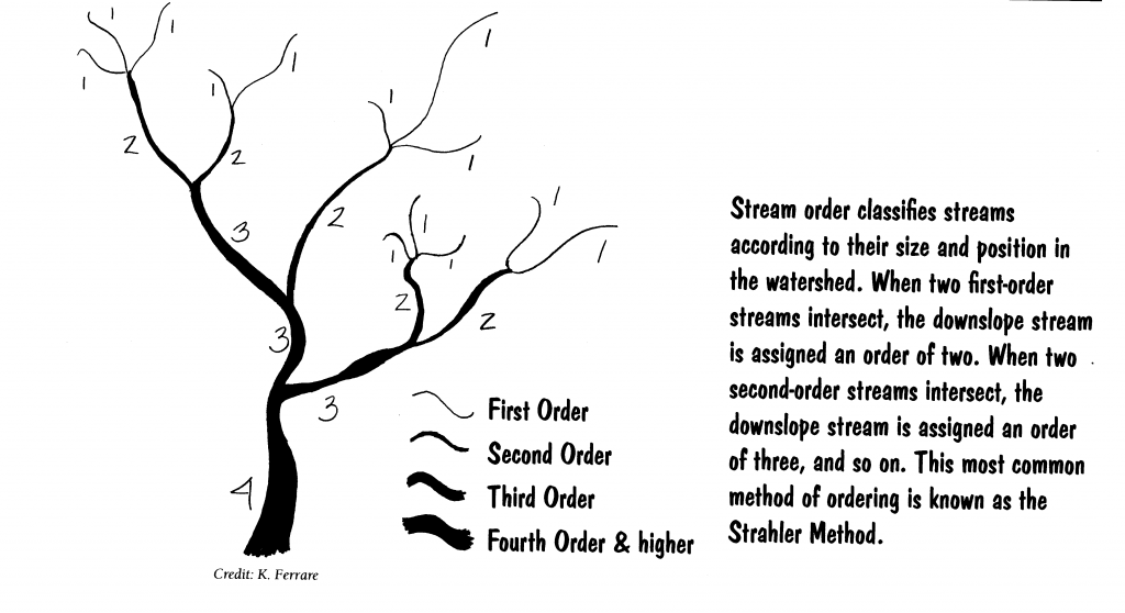 An Explanation of Stream Order