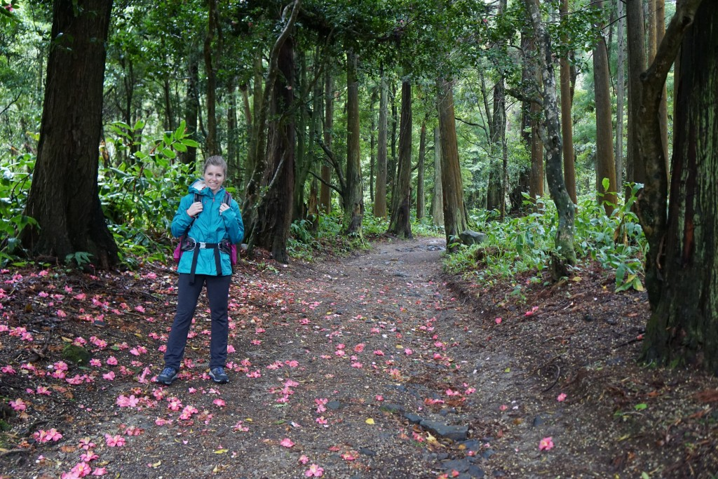 Azores_Islands_Danielle_Trail